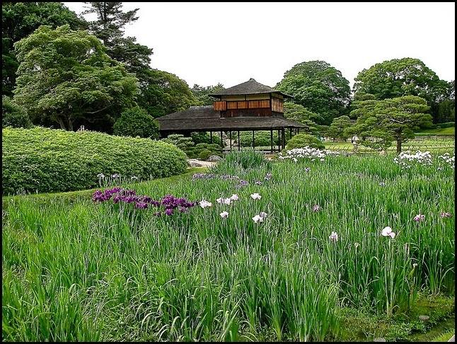 Ryuten tea house, Korakuen Garden in Okayama, Japan
