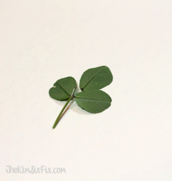 Making shamrock prints