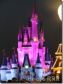 Florida 2011 840