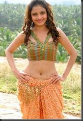 Sheena-Shahabadi-sexy