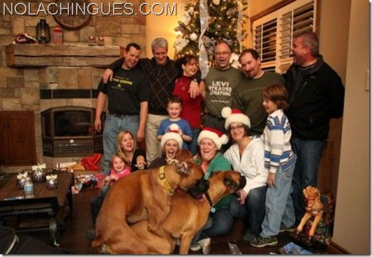 Family_Christmas_Photo