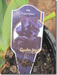 iris deep purple superstistion