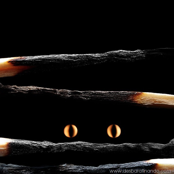 matchstick-art-stanislav-aristov-fosforos-fogo-arte-desbaratinando (11)