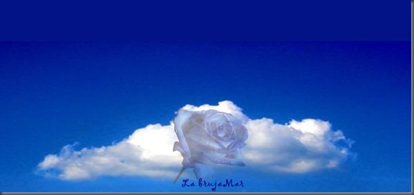 BLUE-FONDO-05