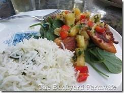 Pineapple Salsa Chicken Salad - The Backyard Farmwife