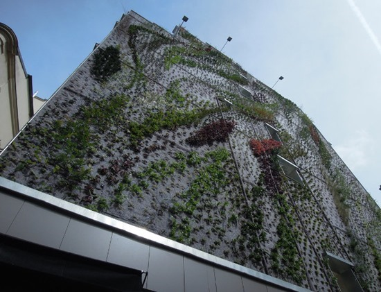 Jardim vertical 05