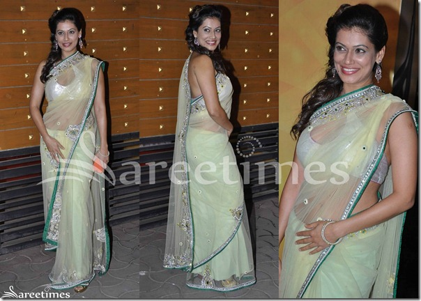 Green_Embrodiery_Shimmer_Saree