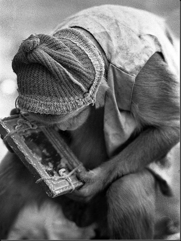J.R.Ibáñez fotógrafo presso  India