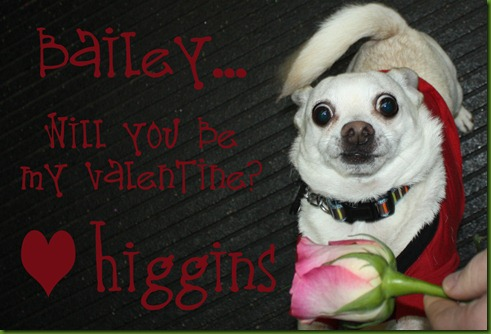 Higgins Valentine copy