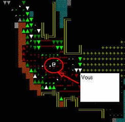 dwarf-fortress-adventurer_3