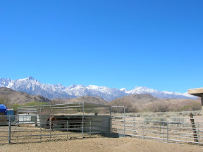 173 - Sierra Nevada.JPG