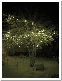 20120224_snow-lights-snowman_009