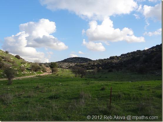 2012-01-20 Flower Hill Tatti Haviva 054
