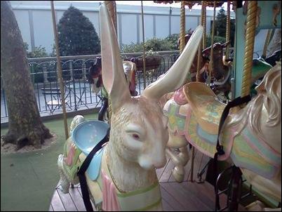 rabbitcarousel