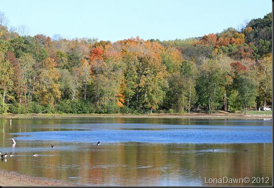 Lake_Alma6_2012