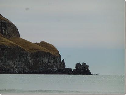 NZ 2015 - JH 5 Feb 097