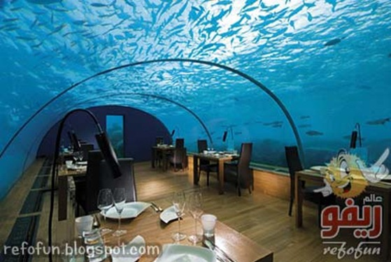 rangali-underwater-restaurant-refofun
