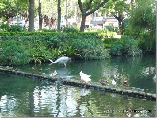 新竹護城河-2