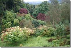 goat muncaster garden