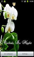 Screenshot of Orchids In Night V