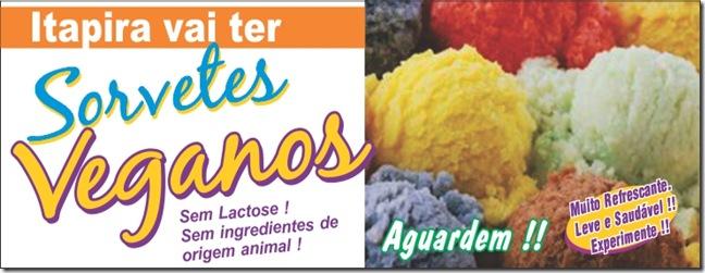 sorvetes veganos2