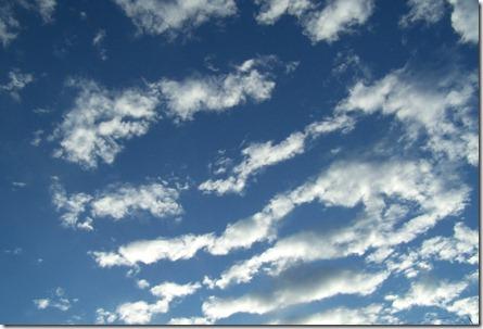 Amy's sky