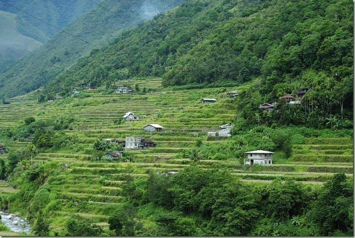 菲律賓巴拿威梯田(Banaue Rice Terraces)