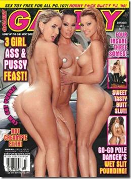 Revista Gallery - Novembro 2011