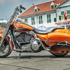 Harley Davidson by Brian Biian - Transportation Bicycles