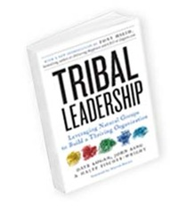 TribalLeadershipBook