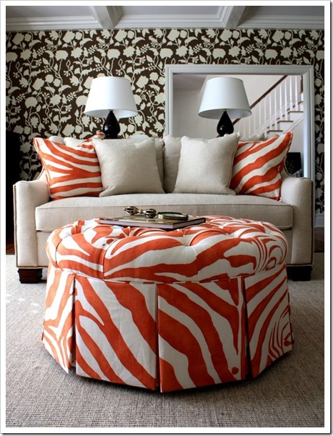 zebra-laranja_thumb3