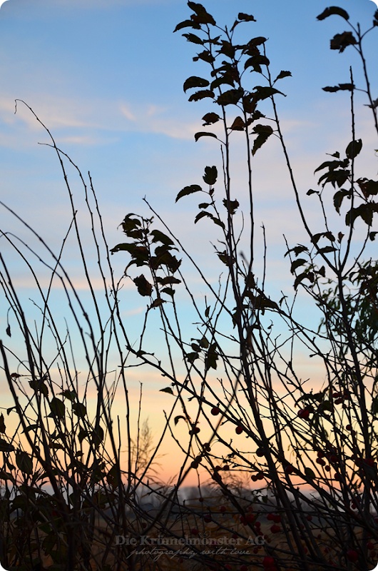 Sonnenuntergang Wremen 231113