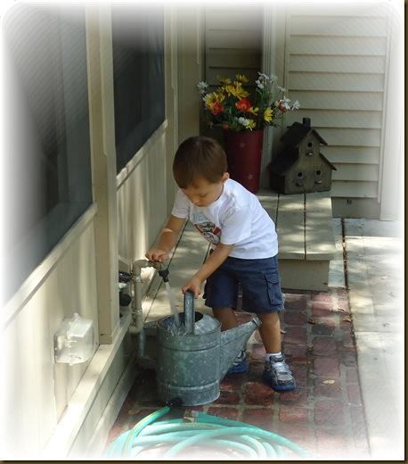 Watering plants 3