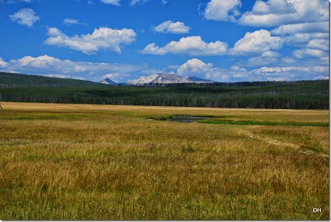 08-11-14 A Yellowstone National Park (352)