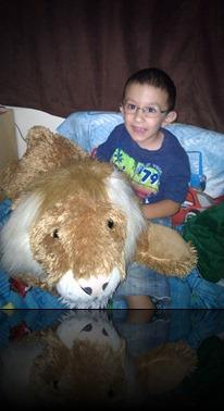 6-26-2011 lion