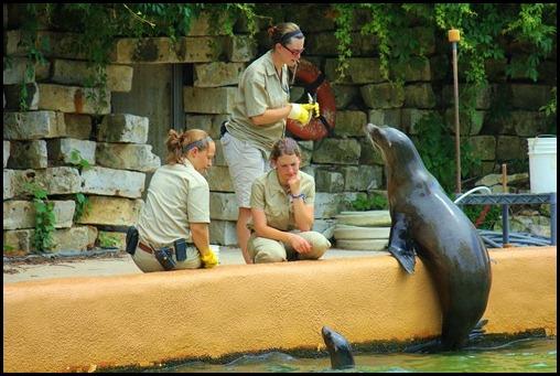 Zoo4 438