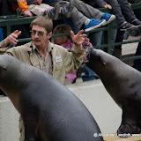 Heidelberger-Zoo (3 von 49).jpg