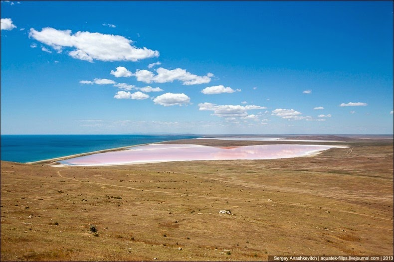 sivash-salt-lagoons-14