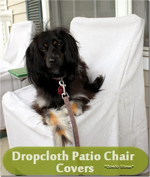 dropclothpatiochaircover