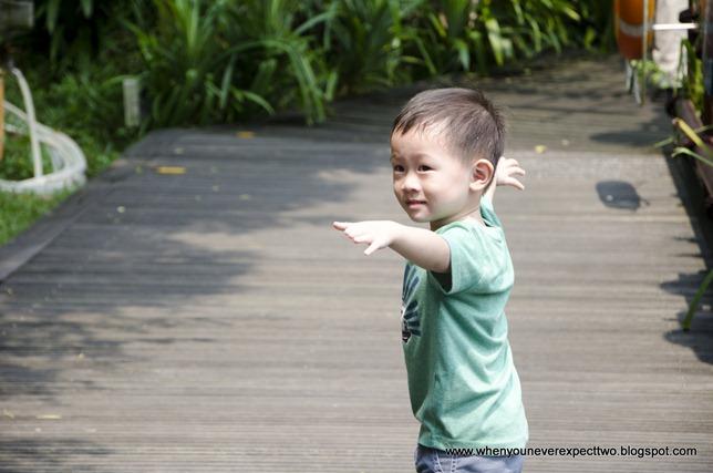 20110603_Jurong Bird park (43 of 53)