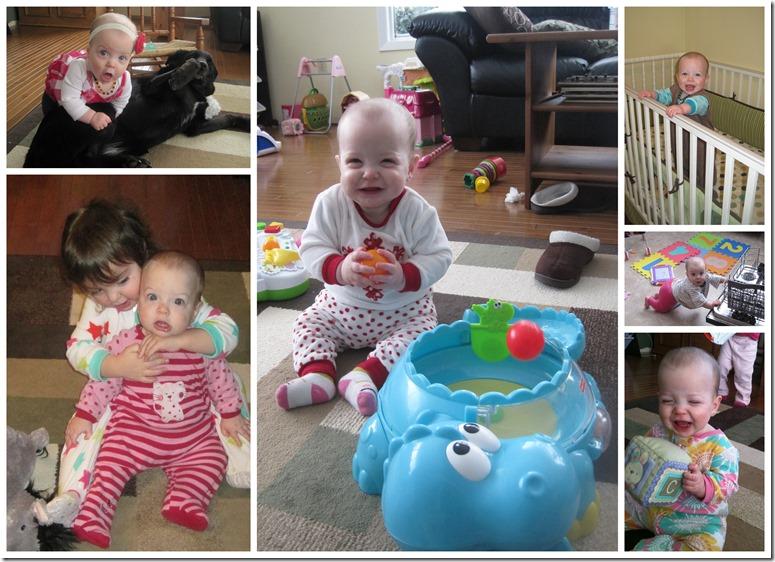 Gwen's 8 month4