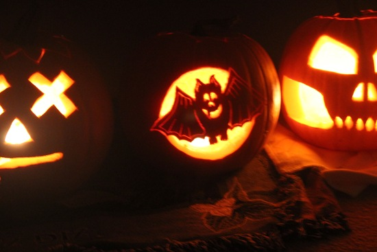 pumpkin-bat
