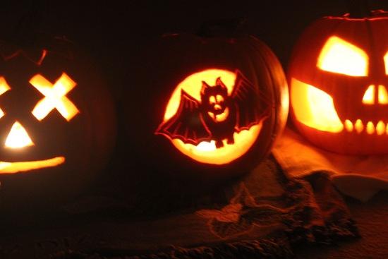 pumpkin-bat