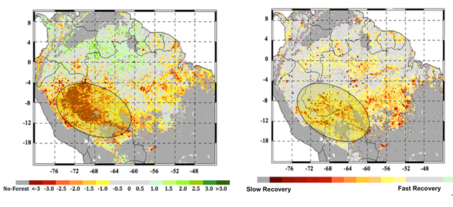 At left, the extent of the 2005 megadrought in the western Amazon rainforests during the summer months of June, July and August as measured by NASA satellites. The most impacted areas are shown in shades of red and yellow. The circled area in the right panel shows the extent of the forests that experienced slow recovery from the 2005 drought, with areas in red and yellow shades experiencing the slowest recovery. Graphic: NASA / JPL-Caltech / GSFC