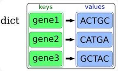 python Estructura de datos tipo diccionario