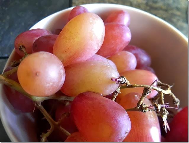 grapes-public-domain-pictures-1 (2236)