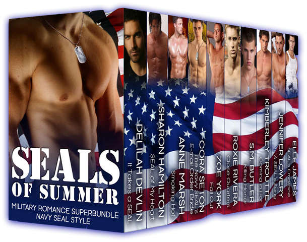 SEALS OF SUMMER cover