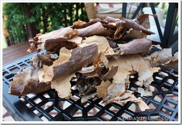 birch bark pile