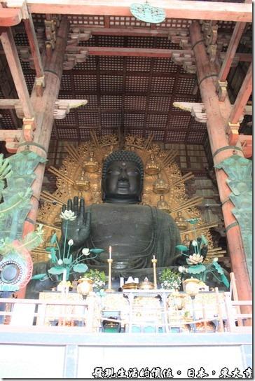 日本奈良-東大寺的正尊是「盧舎那佛」,俗稱「奈良大佛」,高15公尺以上、總重380噸,是世界最大的青銅佛像。