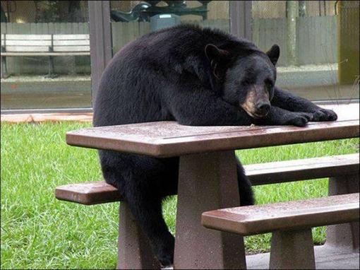 Перерыв без перекура.